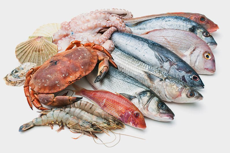 quality seafood assortment